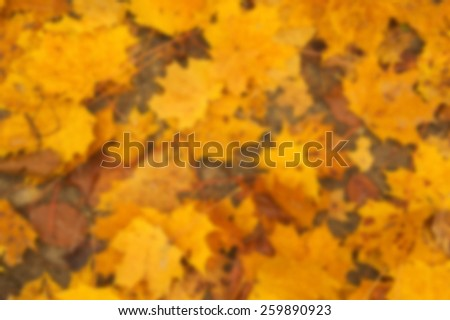Blurred view of autumn leaves background texture - stock photo