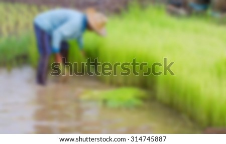 Blurry image of peasants working in the rice field. - stock photo