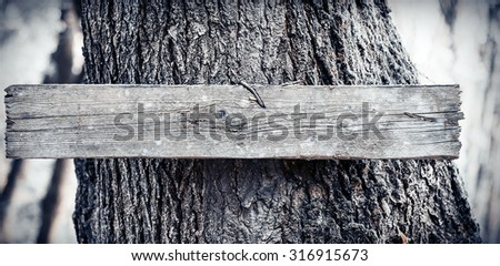Board pointer on an old tree. Toned photo. - stock photo