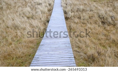 boardwalk 4 - stock photo