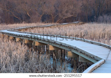 Boardwalk crossing wetlands and into forest of minnesota valley wildlife refuge in bloomington  - stock photo