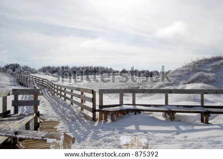 Boardwalk in the park on a hazy winter day. - stock photo