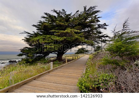 Boardwalk that meanders along a bluff that overlooks the ocean. - stock photo