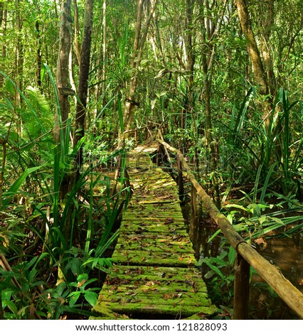 Boardwalk Through The Forest - stock photo
