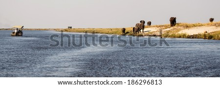 Boat in Chobe River, Chobe National Park, Botswana, Africa - stock photo