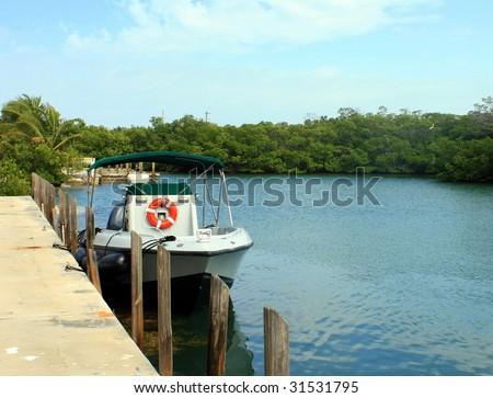 Boat in mangrove - stock photo