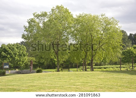 Boat ramps steel beams and Spring blooms in a park. - stock photo