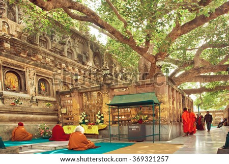 BODH GAYA, INDIA - JAN 9: Many prayers sitting around the Bodhi tree, which the buddha became enlightened on January 9 2013. BodhGaya is a sites related to Buddha, with Kushinagar, Lumbini and Sarnath - stock photo