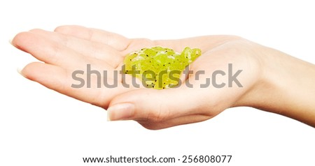 Body scrub in woman hand isolated on white background - stock photo