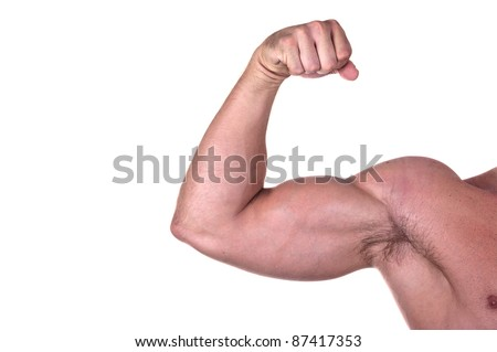 bodybuilder biceps isolated on white background - stock photo