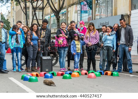BOGOTA, COLOMBIA - APRIL 23: Crowd of people watches a guinea pig choose which colored bowl to run into in Bogota, Colombia on April 23, 2016 - stock photo