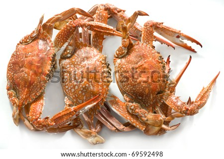 Boiled crabs on white background - stock photo