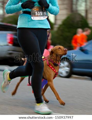 BOISE, IDAHO - NOVEMBER 22:  Woman 535 and her pet dog running through the Turkey Day 5k in Boise, Idaho on November 22, 2012 - stock photo