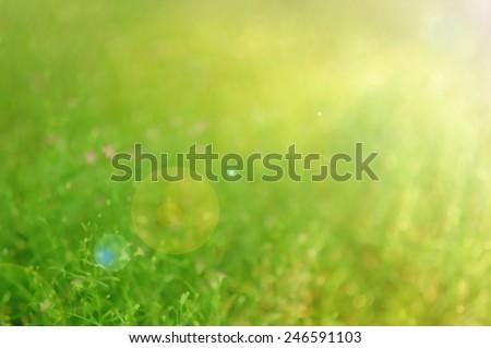 bokeh blur backgrounds - stock photo