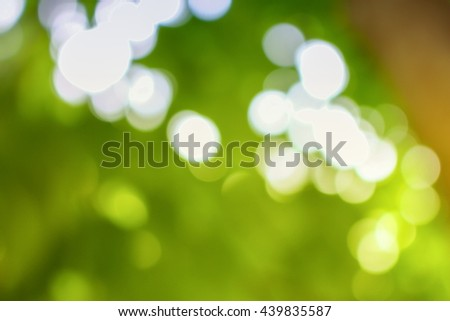 Bokeh natural color background. Bokeh Color Warm Filter  leaf of the tree Fresh green background, abstract blurred foliage and bright summer sunlight. with copy space. - stock photo