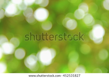 Bokeh natural color background, colorful  leaf of the tree fresh green, abstract blurred foliage and bright summer sunlight with copy space - stock photo