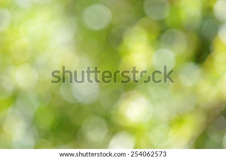 bokeh of the canopy under the sky - stock photo