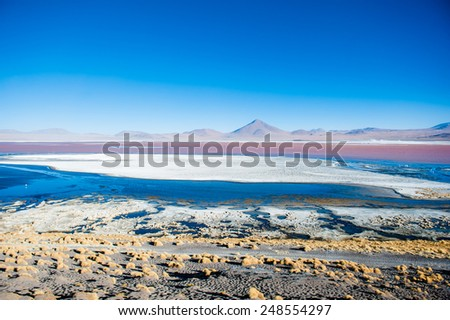 Bolivian lagoon - stock photo