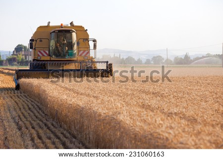 BOLOGNA, ITALY - JULY 2, 2014: Wheat harvest mechanized in the Po Valley region considered the breadbasket of Italy. It covers an area of 47820 square kilometers irrigated by the River Po. - stock photo