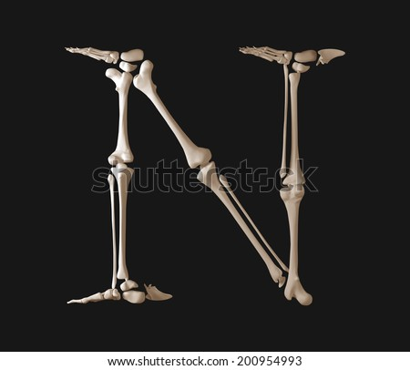 Bone font letter N. Skeleton alphabet isolated on black background. - stock photo
