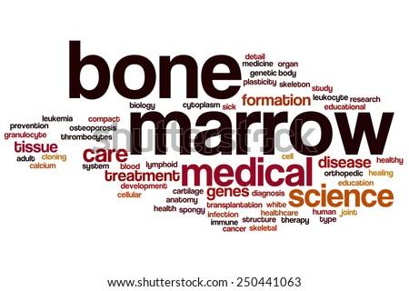 Bone marrow word cloud concept - stock photo
