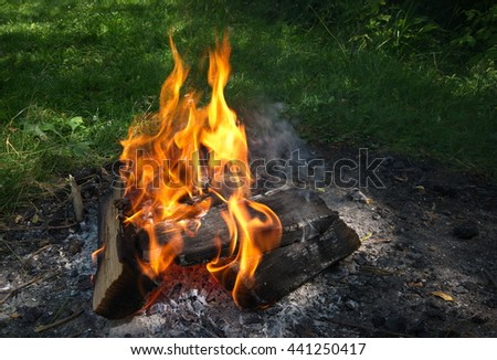 Bonfire. Campfire in nature. Burning Wood with smoke. Close up of woods burning in fire place - stock photo