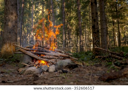 Bonfire in the autumn forest in the evening - stock photo