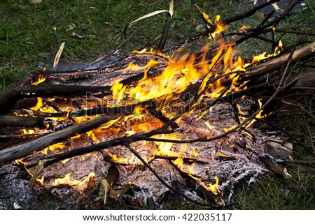 Bonfires burning firewood and the ground twigs of ash - stock photo