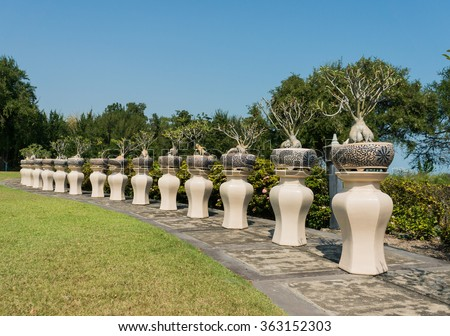 Bonsai trees pots lined in rows on the lawn / Gorgeous garden - stock photo