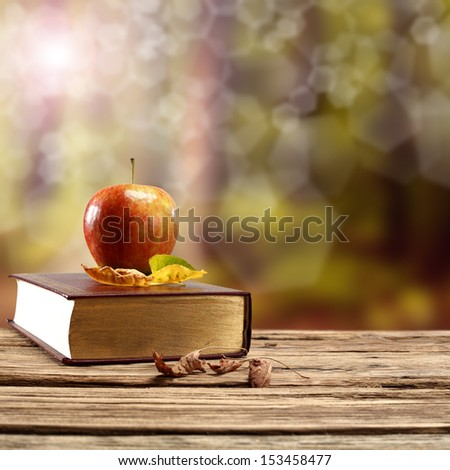 book and forest  - stock photo
