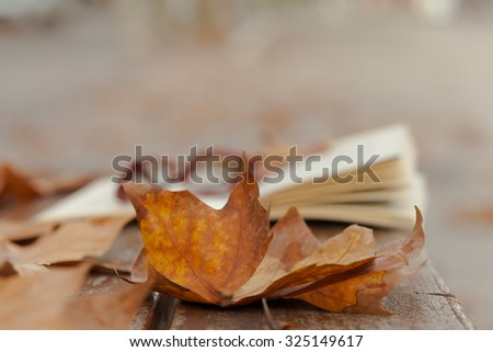 Book and red glasses on   bench in autumn park. - stock photo