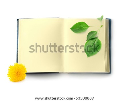 Book isolated on white background - stock photo