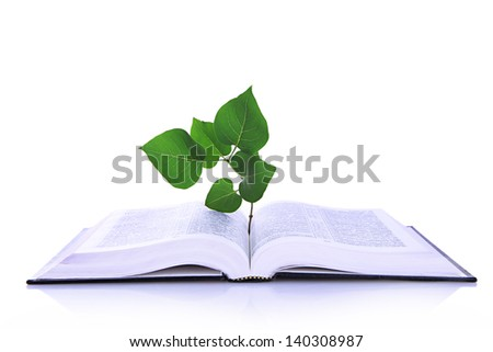 Book with plant isolated on white - stock photo