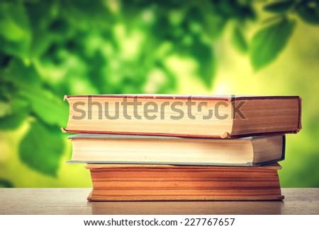 Books in the summer garden - stock photo