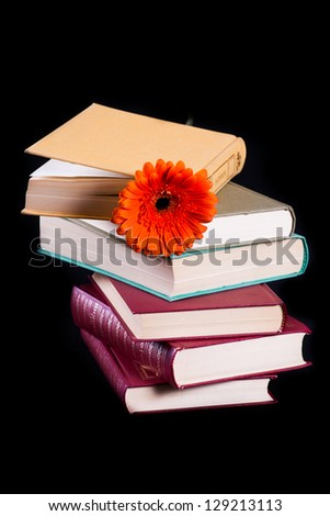 Books with a flower on black background - stock photo