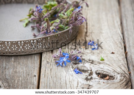 Borage (Starflower) on a wooden board. Also available in vertical format. - stock photo