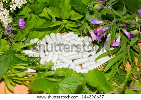 Border of assorted fresh green herbs with supplement or vitamin capsules with plant extracts filling the centre - stock photo