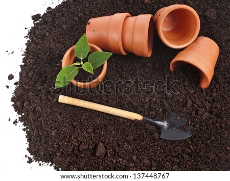 border of gardening tools and seedling in soil surface isolated on a white background - stock photo