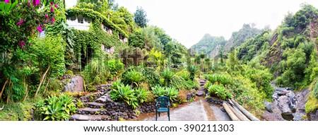 Botanic garden - stock photo