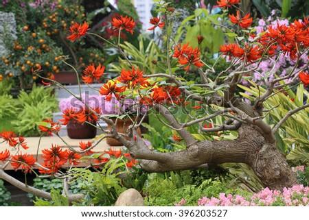 botanic garden in spring - stock photo