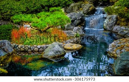 Botanical Garden in Balboa Park, San Diego California. - stock photo