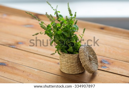 botany, summer, gardening and herbs concept - close up of fresh melissa in wicker basket on wooden table - stock photo