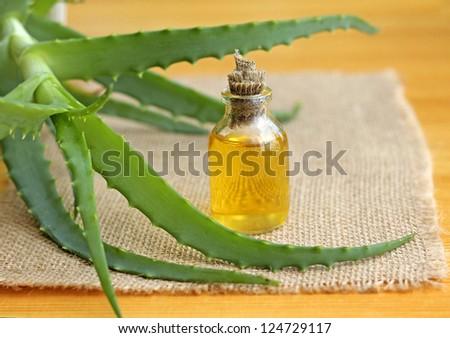 bottle of aloe vera oil, close-up - stock photo
