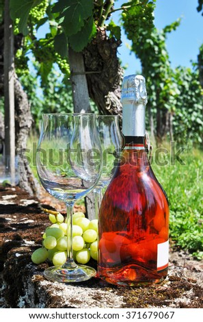 Bottle of champagne, pair of glasses and grapes against vineyards - stock photo