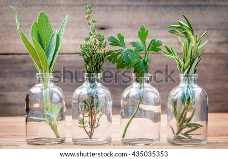 Bottle of essential oil with herbs rosemary, sage,parsley  and thyme  set up on old wooden background . - stock photo