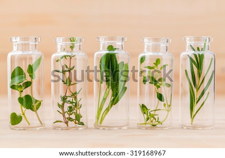 Bottle of herbs lemon thyme ,thyme ,oregano,rosemary and sage leaf on wooden background. - stock photo