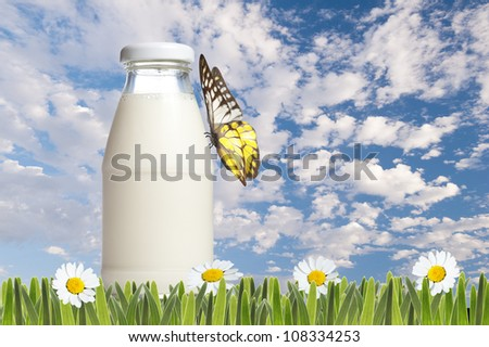 Bottle of milk with green grass and daisies with butterfly and cloudy blue sky background - stock photo