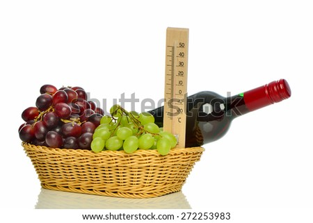 bottle of red wine with grapes in basket - stock photo