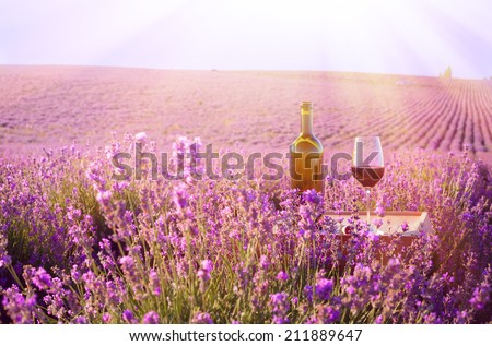 Bottle of wine against lavender landscape. - stock photo