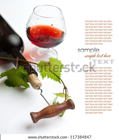 bottle of wine from the vine - stock photo